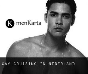 Gay Cruising in Nederland